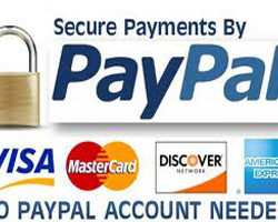 Online Shop - Information about Paying Online
