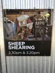 Sheep Shearing Sign (Photo by Tom O'Dea)