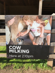 Cow Milking Sign (Photo by Tom O'Dea)