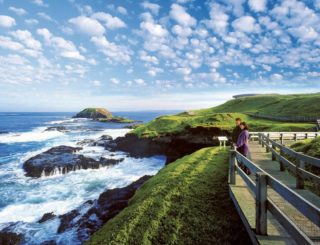 Phillip Island Nature Parks Community Open Day - Sunday 15 March 2020